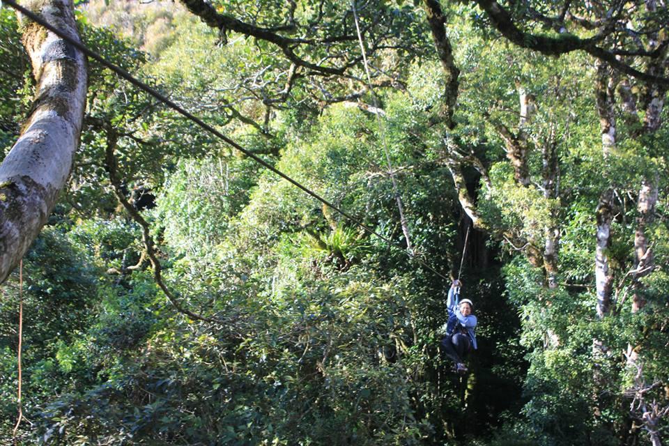 Zip lining là hình thức du hành trên dây vượt băng qua rừng trên không trung.